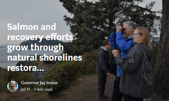 Salmon and recovery efforts grow through natural shoreline restoration, land-based whale watching