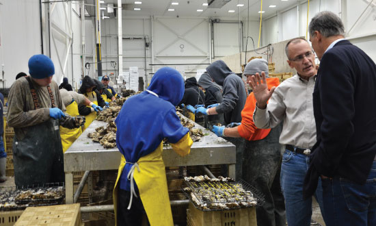 Gov. Inslee and Bill Dewey at Taylor Shellfish